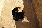 Page peering from hole at excavation site