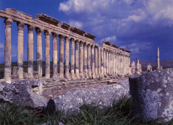 A row of dozens of classical columns holding up the remains of an ancient building.